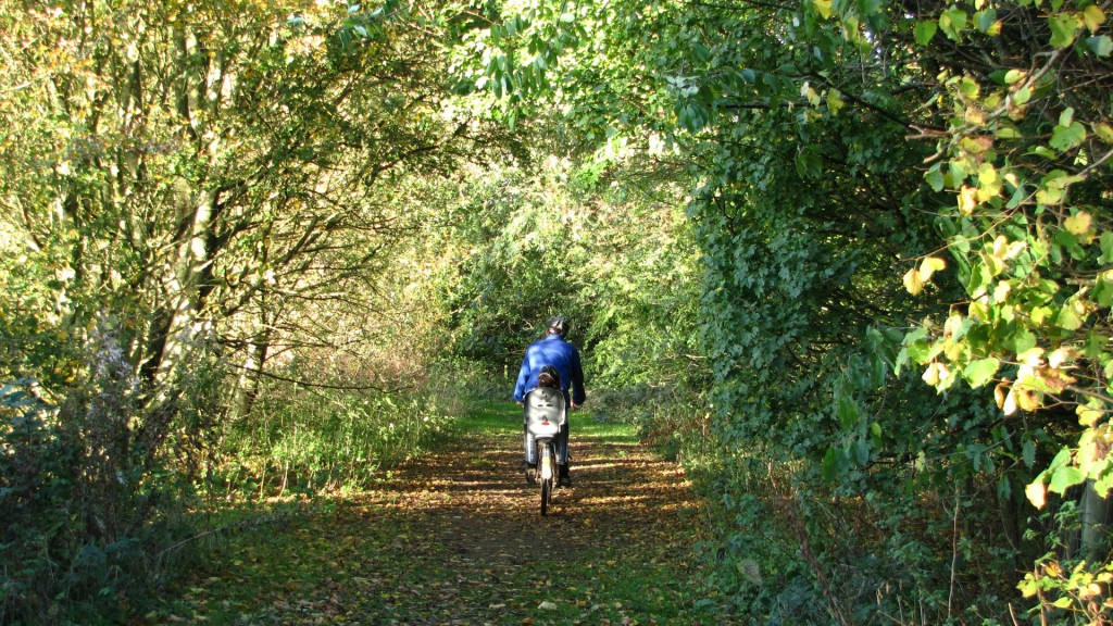 Enjoy cycling on the nature reserve