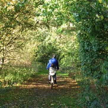 Cycle Around The Nature Reserve