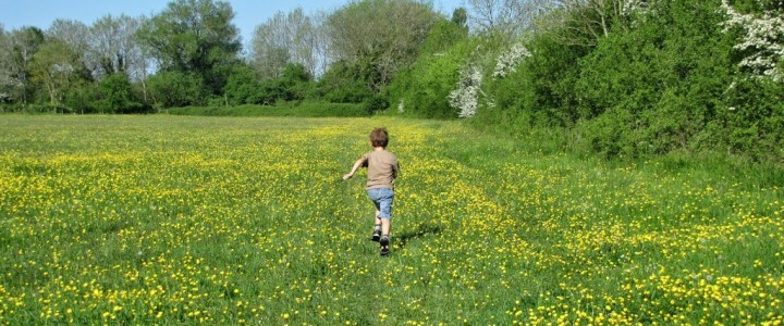 Cotswold Family Holiday Walks