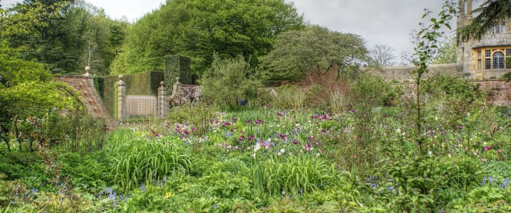 Experience one of the UK's great gardens