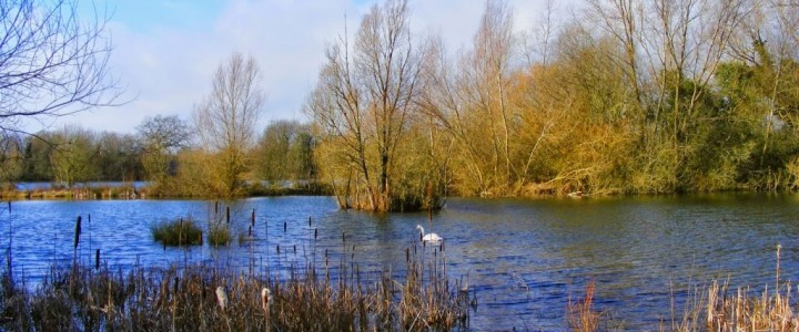 Lower Moor Farm Nature Reserve, Wiltshire