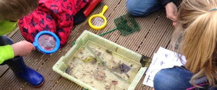 Nature Week at Cotswold Farm Park