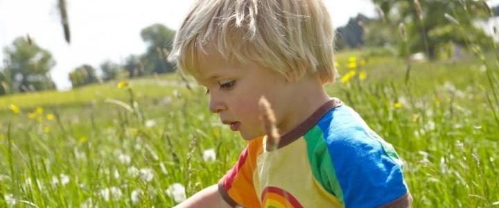 Summer fun at Westonbirt Arboretum