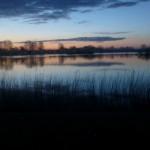 Dawn at Daisy Chain